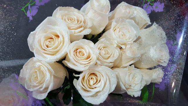 Flores blancas.jpg
